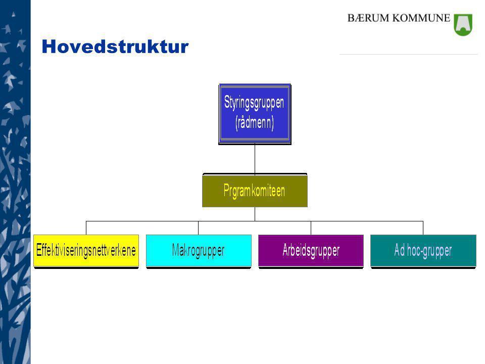 Hovedstruktur