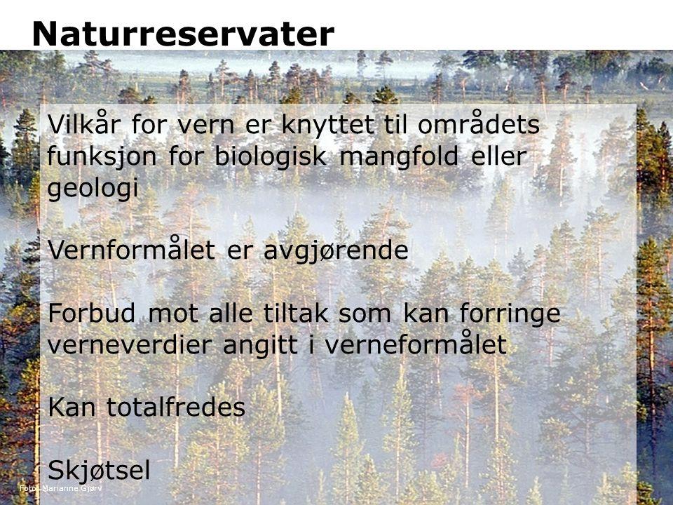 Naturreservater Vilkår for vern er knyttet til områdets funksjon for biologisk mangfold eller geologi Vernformålet er avgjørende Forbud mot alle tilta