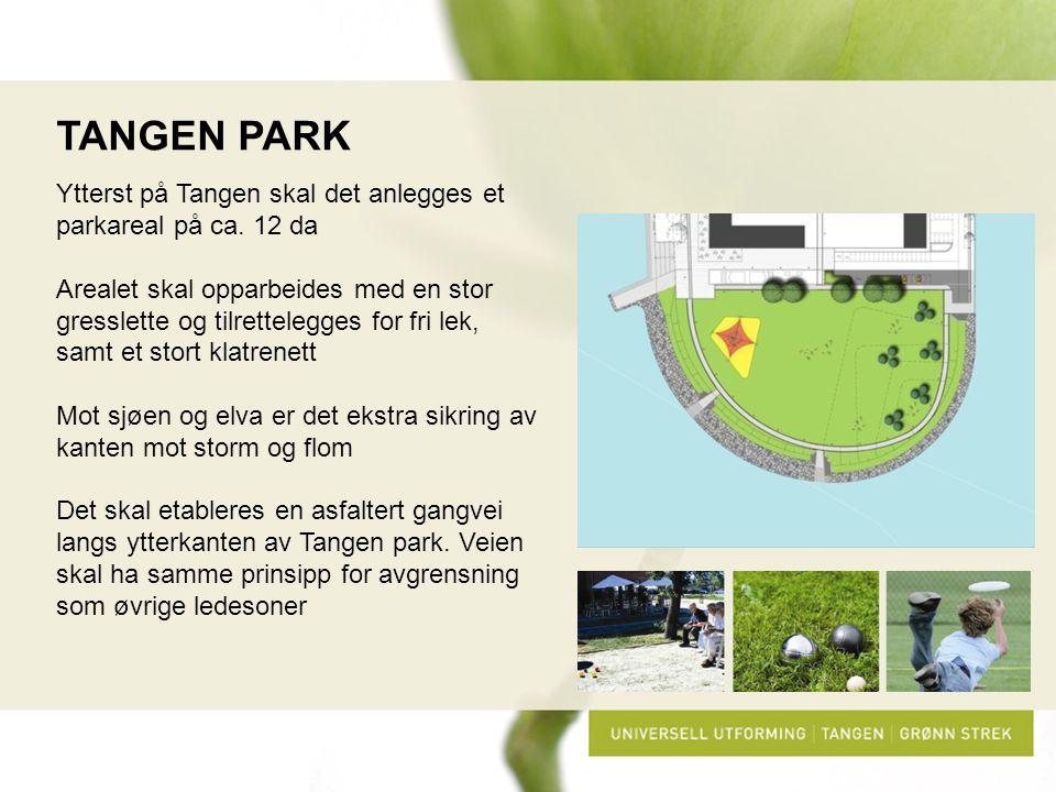 TANGEN PARK Ytterst på Tangen skal det anlegges et parkareal på ca. 12 da Arealet skal opparbeides med en stor gresslette og tilrettelegges for fri le