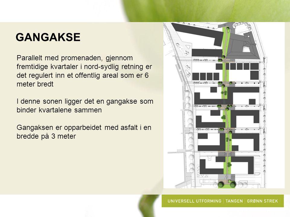 GANGAKSE Parallelt med promenaden, gjennom fremtidige kvartaler i nord-sydlig retning er det regulert inn et offentlig areal som er 6 meter bredt I de