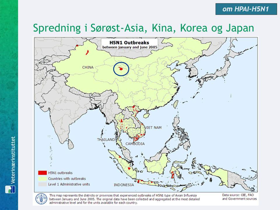 Spredning i Sørøst-Asia, Kina, Korea og Japan om HPAI-H5N1