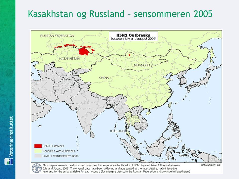 Kasakhstan og Russland – sensommeren 2005