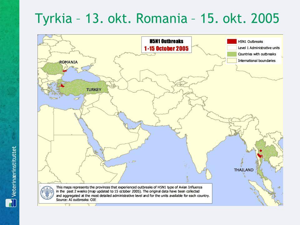 Tyrkia – 13. okt. Romania – 15. okt. 2005