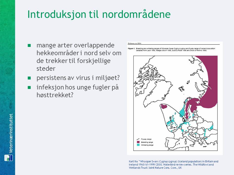 Introduksjon til nordområdene  mange arter overlappende hekkeområder i nord selv om de trekker til forskjellige steder  persistens av virus i miljøe