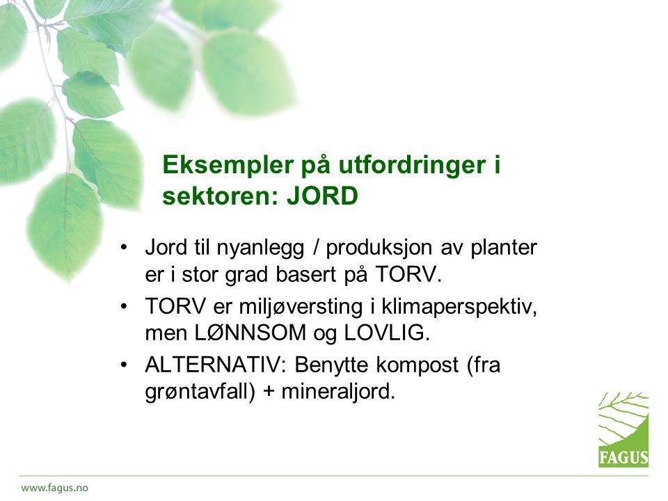 Eksempler på utfordringer i sektoren: JORD •Jord til nyanlegg / produksjon av planter er i stor grad basert på TORV.
