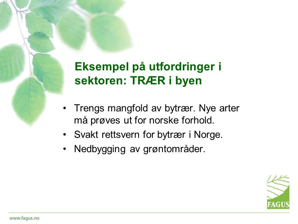 Eksempel på utfordringer i sektoren: TRÆR i byen •Trengs mangfold av bytrær.