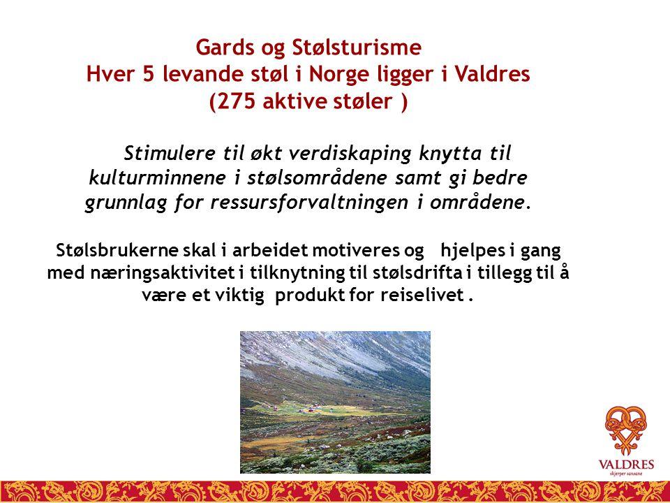 Gards og Stølsturisme Hver 5 levande støl i Norge ligger i Valdres (275 aktive støler ) Stimulere til økt verdiskaping knytta til kulturminnene i støl
