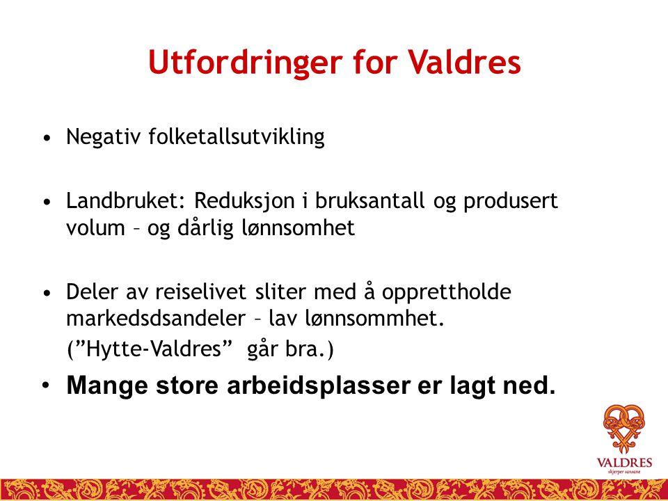 Folketallet i Valdres utvikler seg…… 198820062007+/- Sør-Aurdal361332433194-11,6 Etnedal161613891394-13,7 Nord-Aurdal662764256388-3,6 Vestre Slidre254822172212-13,2 Øystre Slidre309231373166+2,4 Vang194716241591-18,3 Valdres194431803517945-7,7 Norge+11,3 NB 16.300 hytter = 2.200.0000 gjestedøgn =5.500 innbyggere