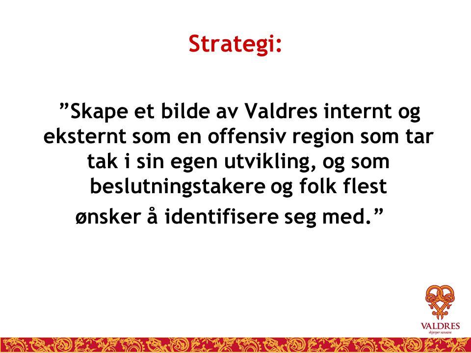 """Strategi: """"Skape et bilde av Valdres internt og eksternt som en offensiv region som tar tak i sin egen utvikling, og som beslutningstakere og folk fle"""