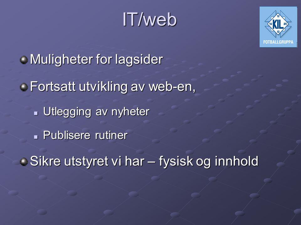 IT/web Muligheter for lagsider Fortsatt utvikling av web-en,  Utlegging av nyheter  Publisere rutiner Sikre utstyret vi har – fysisk og innhold