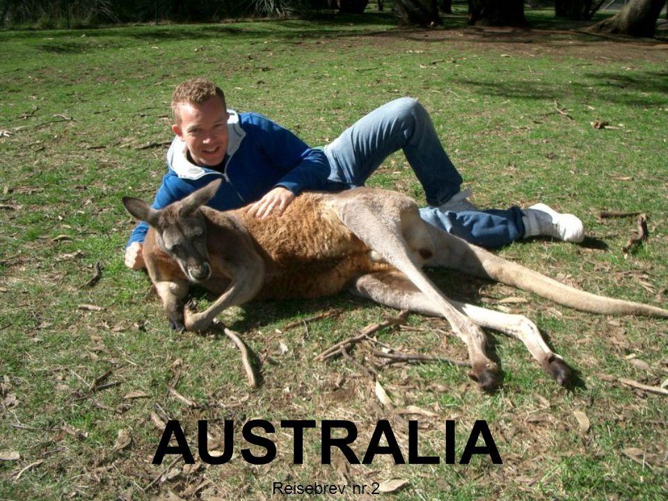 AUSTRALIA Reisebrev nr.2