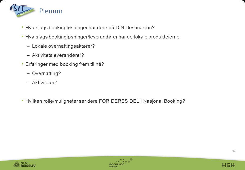 12 Plenum • Hva slags bookingløsninger har dere på DIN Destinasjon? • Hva slags bookingløsninger/leverandører har de lokale produkteierne –Lokale over