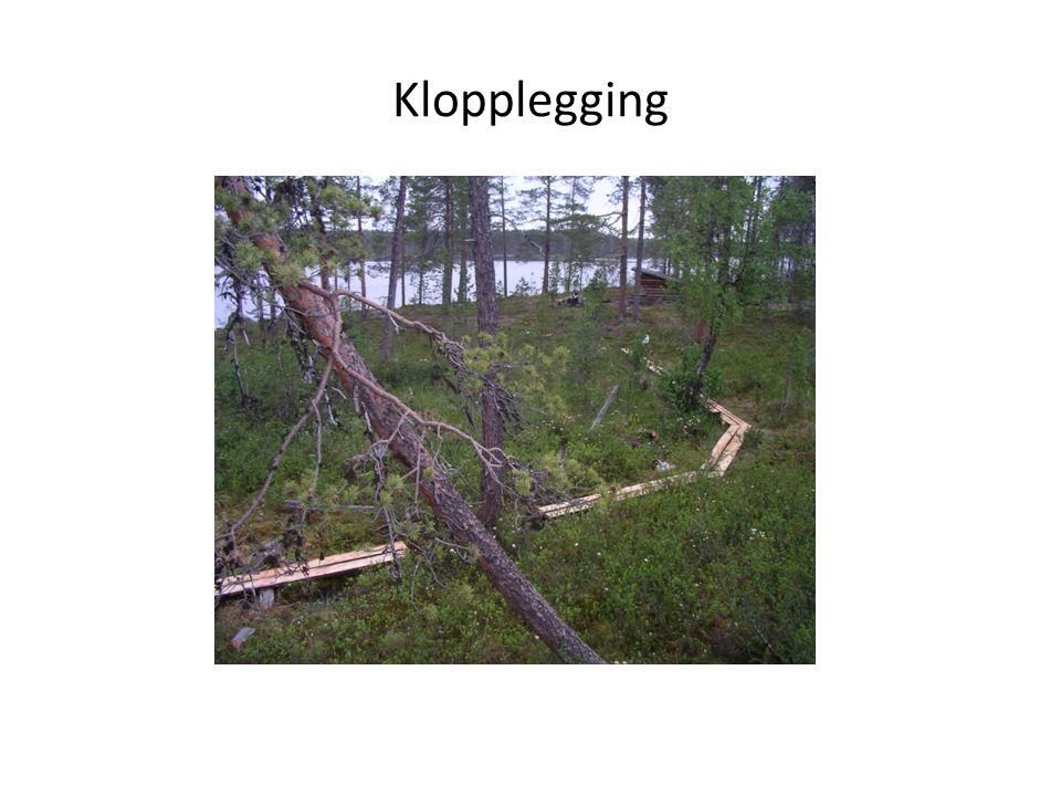 Klopplegging