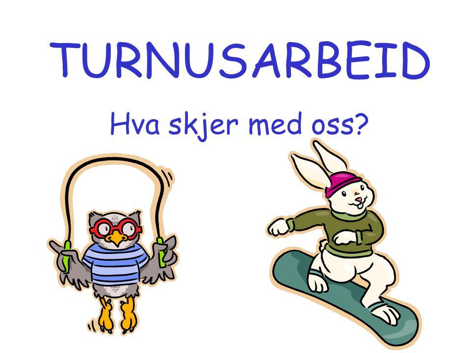 AXELSSON, AHLBORG OG BODIN (1996) •deltagere: Alle medlemmer av svensk jordmorforening i 1989, født etter 1940 (n=3985) •registrert mellom eksponering før og gjennom svangerskap •relasjon mellom eksponering og spontanabort •nattarbeid: OR=1,49, 3-skift: OR=1,63 •senabort (etter 12 uker): OR=3,33 •ingen sammenheng mellom eksponering for lystgass og abort