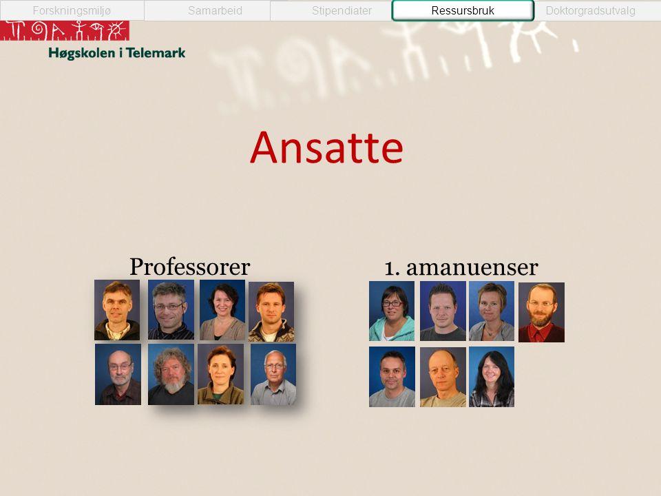 Ansatte Professorer 1. amanuenser Samarbeid StipendiaterRessursbrukDoktorgradsutvalg Forskningsmiljø Ressursbruk