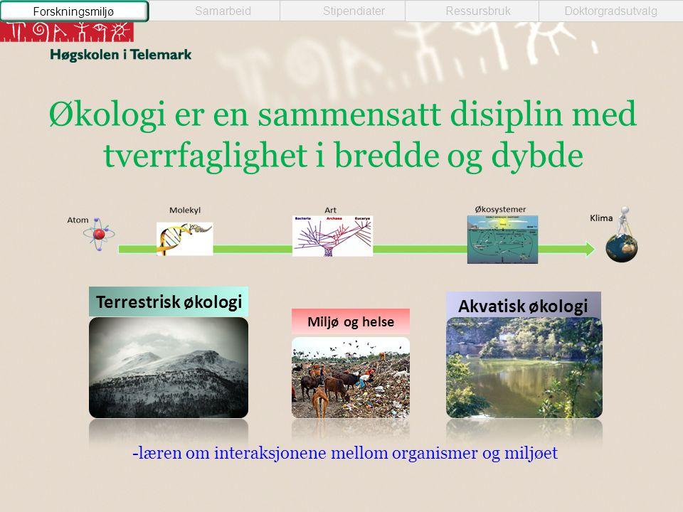 Miljø og helse Akvatisk økologi Terrestrisk økologi -læren om interaksjonene mellom organismer og miljøet Økologi er en sammensatt disiplin med tverrfaglighet i bredde og dybde Samarbeid StipendiaterRessursbrukDoktorgradsutvalg Forskningsmiljø