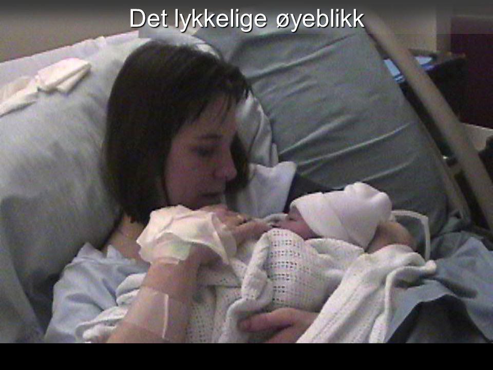 22 Stein-Øyvind Jørstad 2011