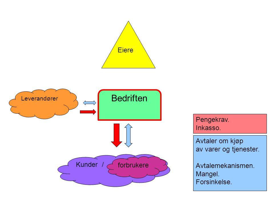 Steinar Taubøll - NMBU Sentrale momenter ved avtaletolkning • Utsagnets ordlyd •Hva ville en fornuftig person oppfattet under tilsvarende forhold.