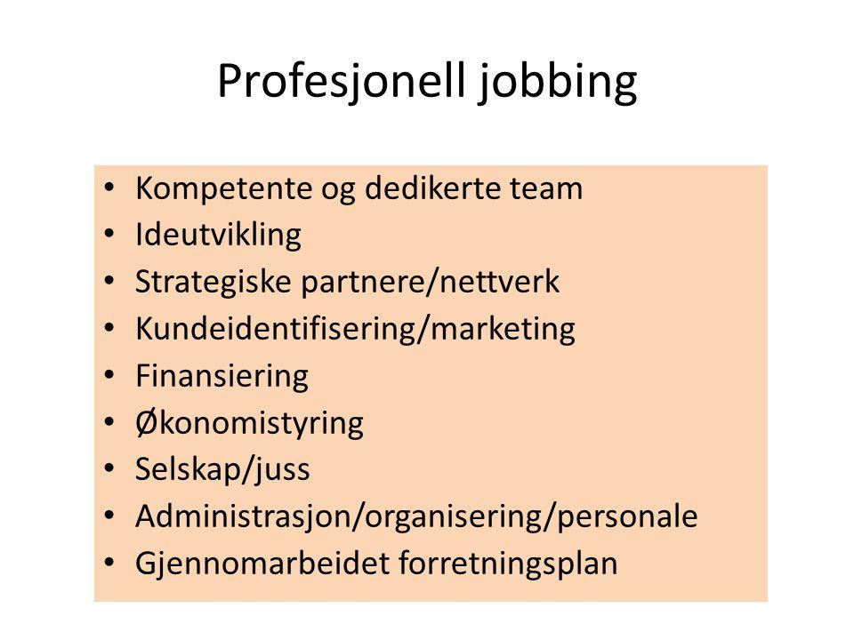• Kompetente og dedikerte team • Ideutvikling • Strategiske partnere/nettverk • Kundeidentifisering/marketing • Finansiering • Økonomistyring • Selska