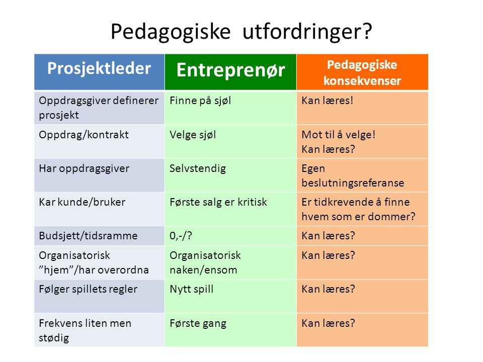 Pedagogiske utfordringer? Prosjektleder Entreprenør Pedagogiske konsekvenser Oppdragsgiver definerer prosjekt Finne på sjølKan læres! Oppdrag/kontrakt