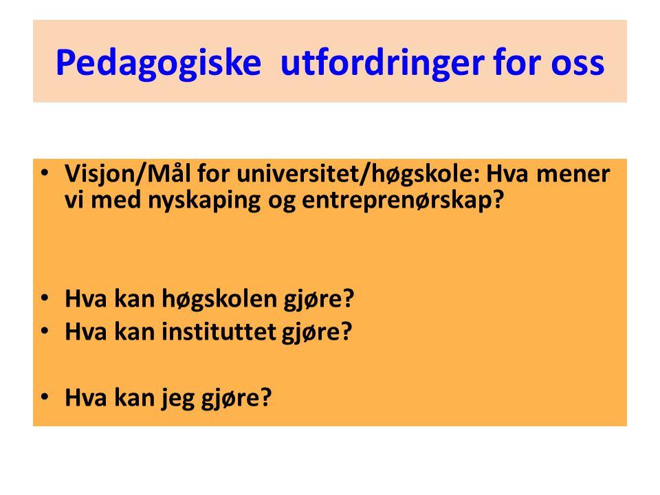 • Visjon/Mål for universitet/høgskole: Hva mener vi med nyskaping og entreprenørskap? • Hva kan høgskolen gjøre? • Hva kan instituttet gjøre? • Hva ka