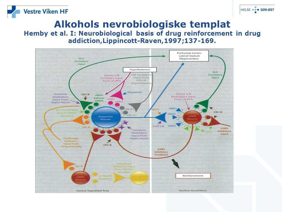 Alkohols nevrobiologiske templat Hemby et al. I: Neurobiological basis of drug reinforcement in drug addiction,Lippincott-Raven,1997;137-169.