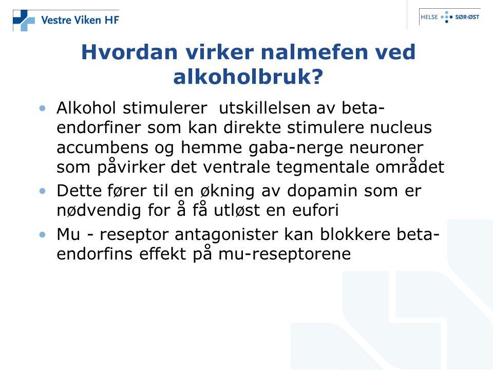 Hvordan virker nalmefen ved alkoholbruk? •Alkohol stimulerer utskillelsen av beta- endorfiner som kan direkte stimulere nucleus accumbens og hemme gab
