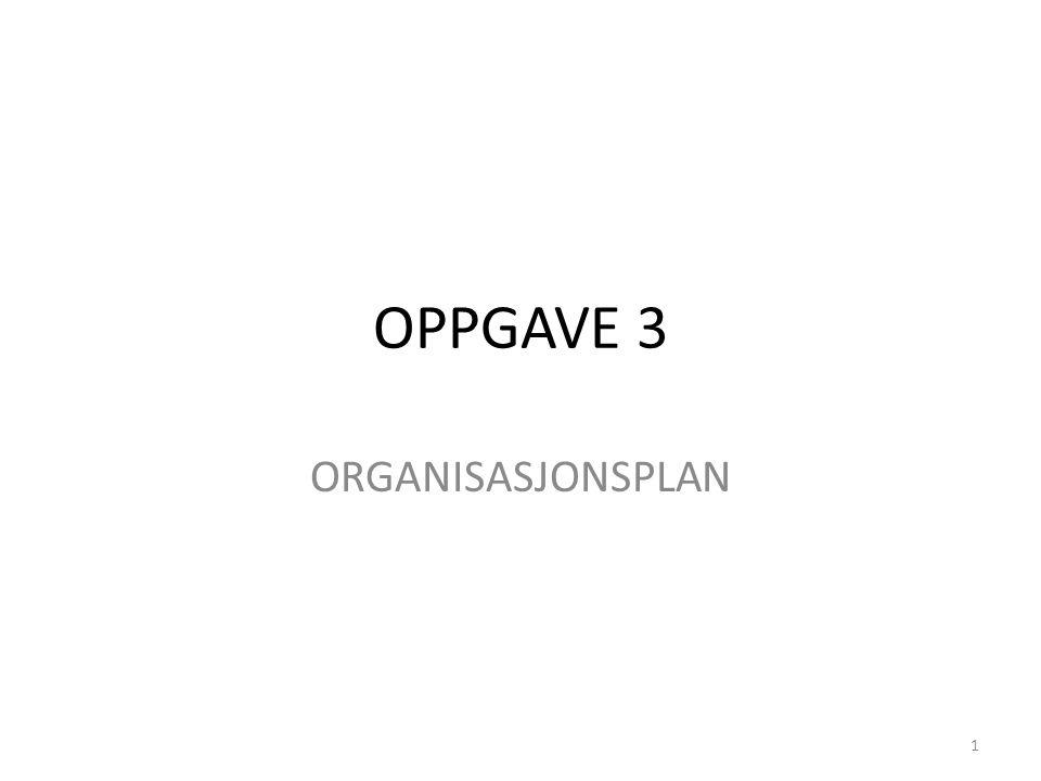 OPPGAVE 3 ORGANISASJONSPLAN 1