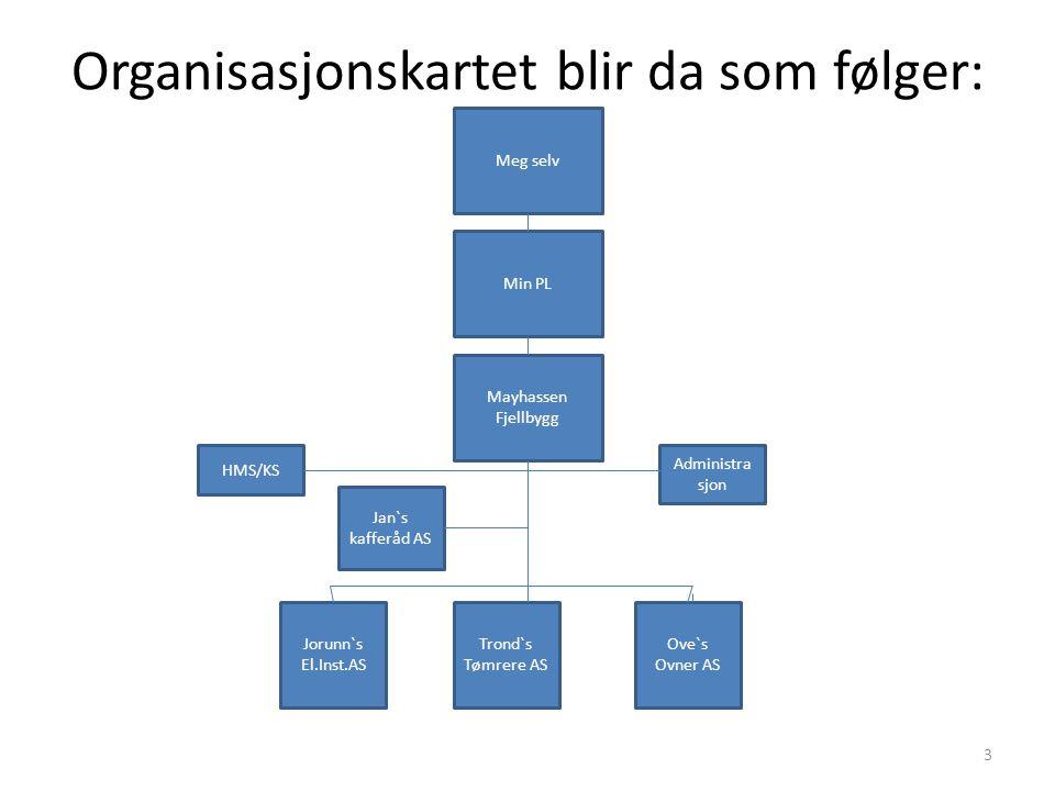 Organisasjonskartet blir da som følger: Meg selv Mayhassen Fjellbygg Min PL Jorunn`s El.Inst.AS Jan`s kafferåd AS Trond`s Tømrere AS Ove`s Ovner AS HM