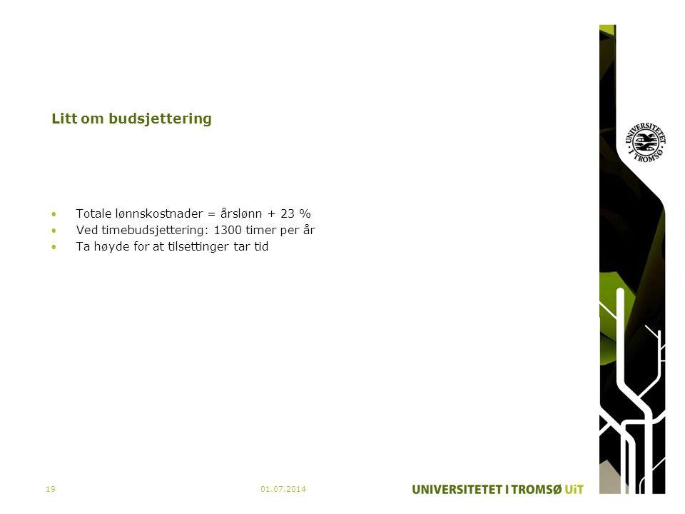 01.07.201419 Litt om budsjettering •Totale lønnskostnader = årslønn + 23 % •Ved timebudsjettering: 1300 timer per år •Ta høyde for at tilsettinger tar