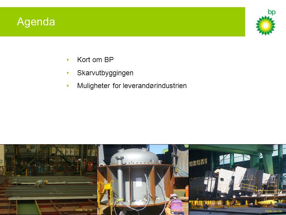 Kontraktsmuligheter for Skarv Anslått totale utgifter til tjenester og materiell, ca.