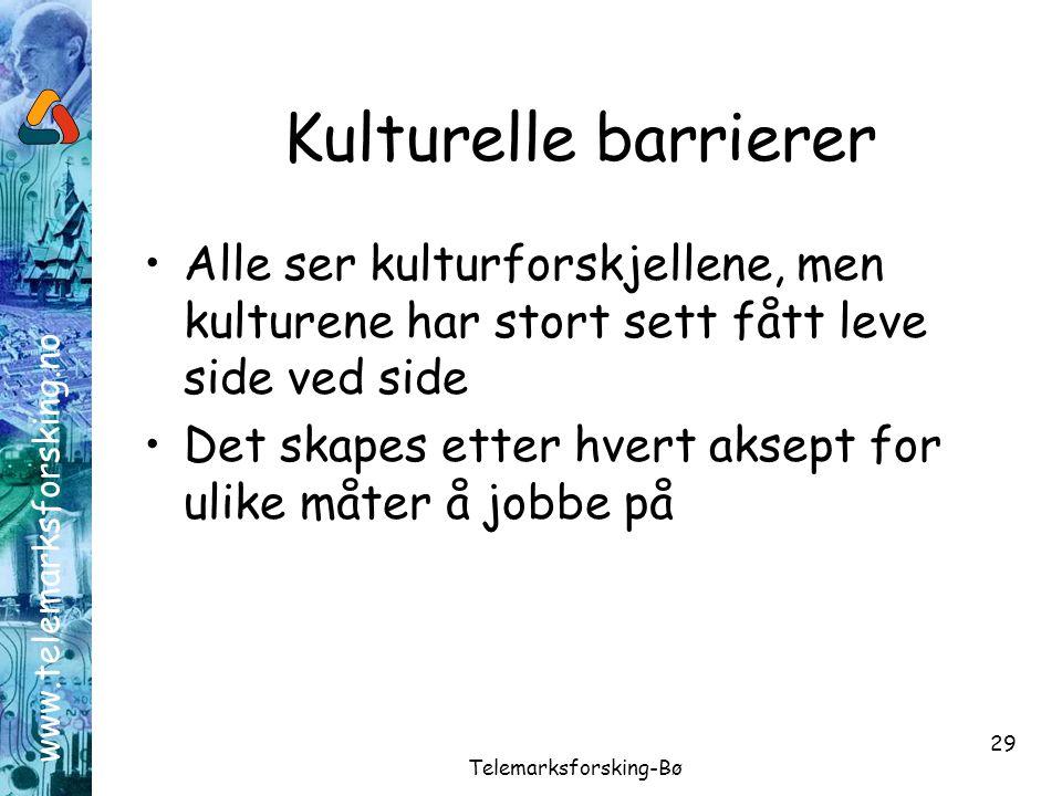www.telemarksforsking.no Telemarksforsking-Bø 29 Kulturelle barrierer •Alle ser kulturforskjellene, men kulturene har stort sett fått leve side ved si