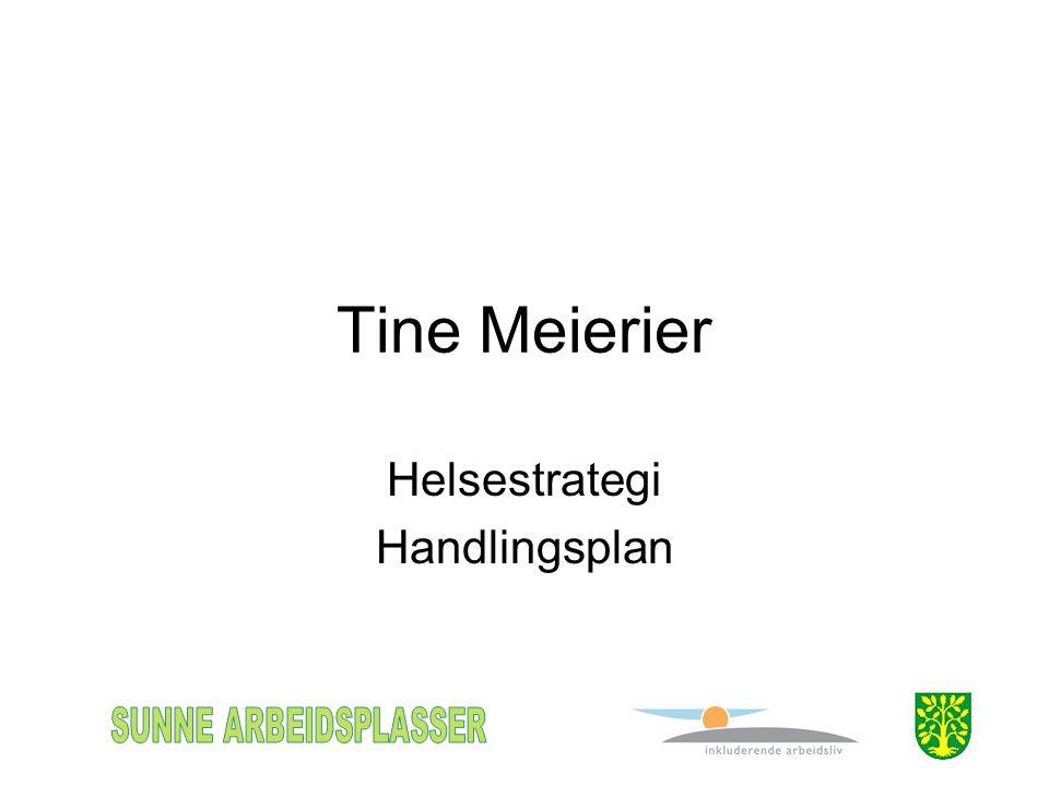 Tine Meierier Helsestrategi Handlingsplan