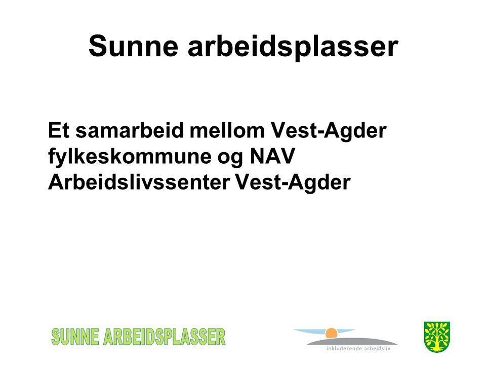 Sunne arbeidsplasser Et samarbeid mellom Vest-Agder fylkeskommune og NAV Arbeidslivssenter Vest-Agder