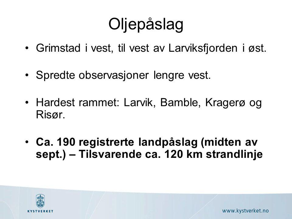 Oljepåslag •Grimstad i vest, til vest av Larviksfjorden i øst.