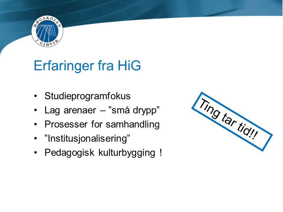 """Erfaringer fra HiG •Studieprogramfokus •Lag arenaer – """"små drypp"""" •Prosesser for samhandling •""""Institusjonalisering"""" •Pedagogisk kulturbygging ! Ting"""