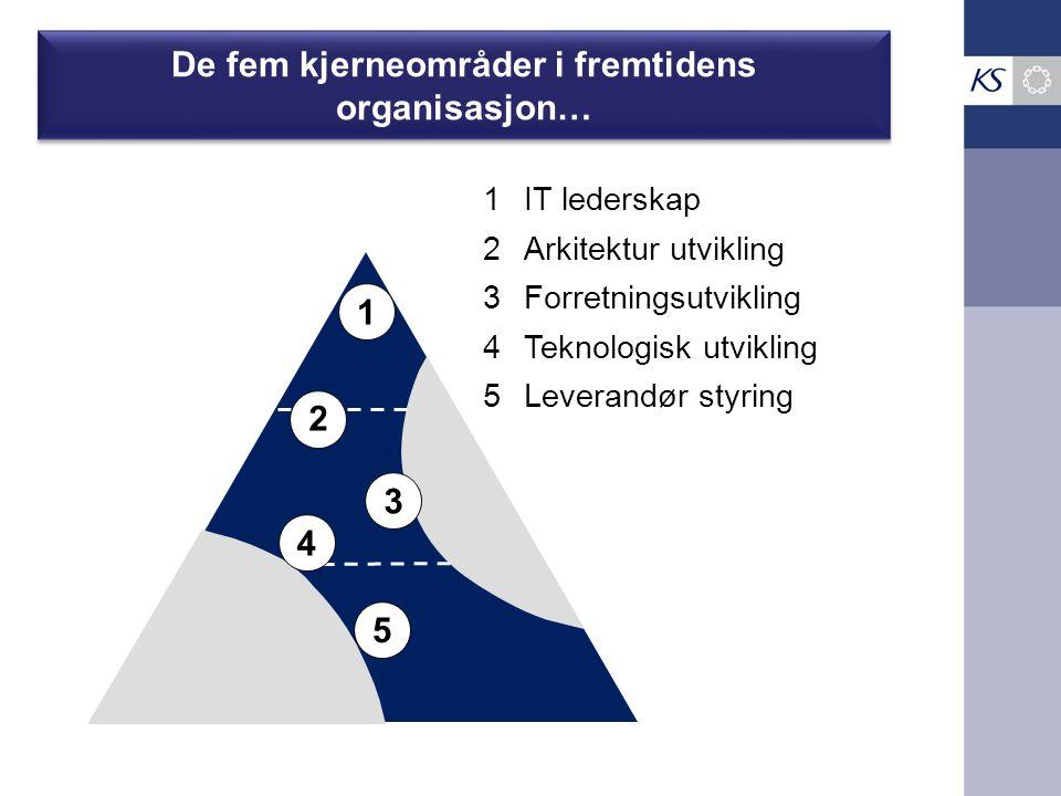 De fem kjerneområder i fremtidens organisasjon… 1 1IT lederskap 2 2Arkitektur utvikling 3 3Forretningsutvikling 4 4Teknologisk utvikling 5 5Leverandør