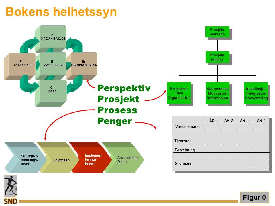 Bokens helhetssyn Figur 0 Perspektiv Prosjekt Prosess Penger E: TEKNISK UTSTYR A: ORGANISASJON B: PROSESSER D: SYSTEMER C: DATA Prosesser Data Organis