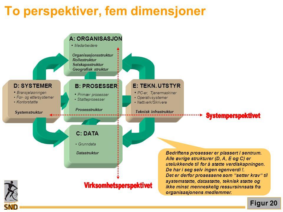 To perspektiver, fem dimensjoner Bedriftens prosesser er plassert i sentrum. Alle øvrige strukturer (D, A, E og C) er utelukkende til for å støtte ver