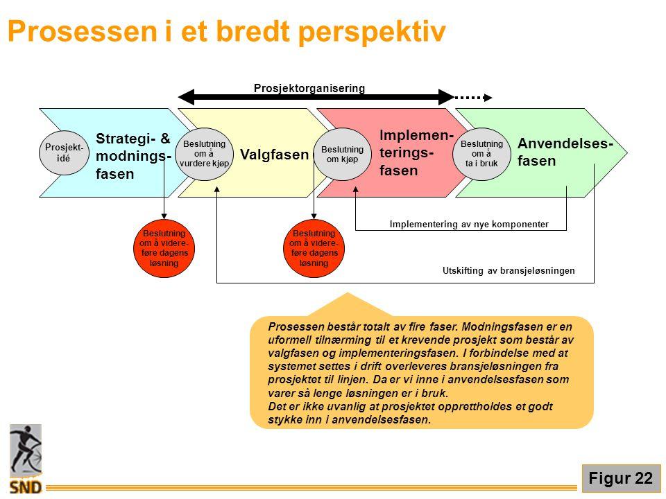 Prosessen i et bredt perspektiv Prosessen består totalt av fire faser. Modningsfasen er en uformell tilnærming til et krevende prosjekt som består av