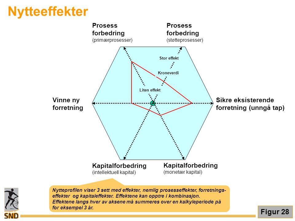 Nytteeffekter Prosess forbedring (primærprosesser) Prosess forbedring (støtteprosesser) Sikre eksisterende forretning (unngå tap) Vinne ny forretning