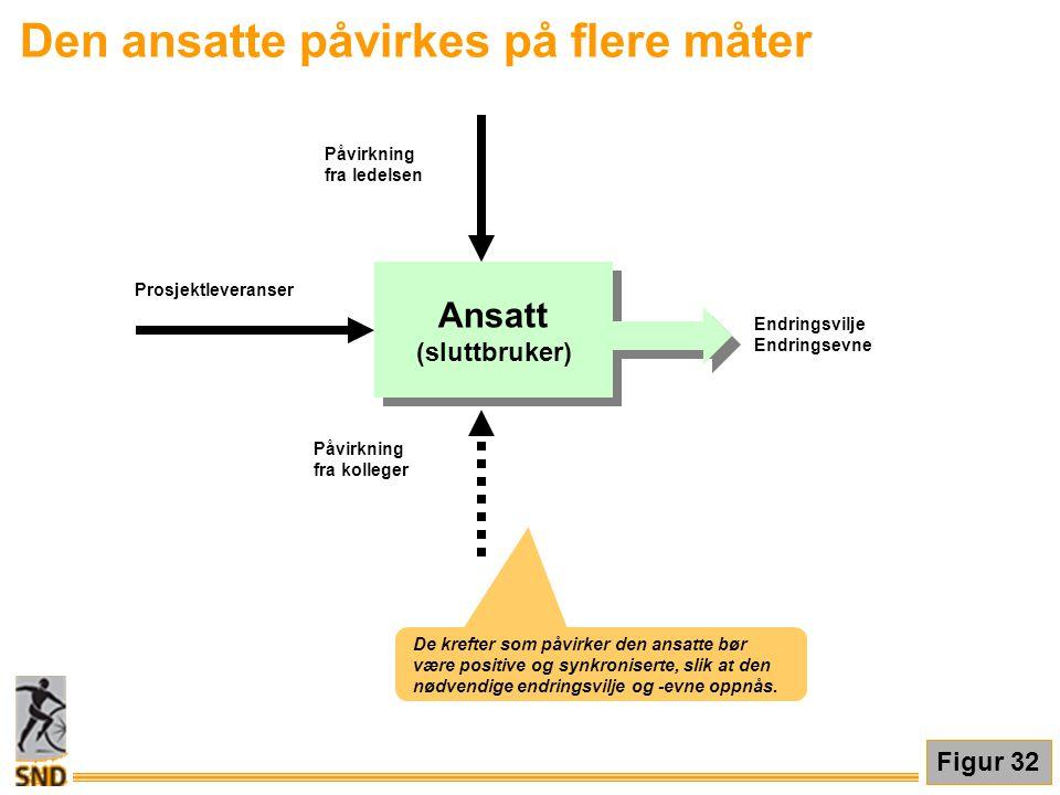 Den ansatte påvirkes på flere måter Ansatt (sluttbruker) Ansatt (sluttbruker) Prosjektleveranser Påvirkning fra ledelsen Påvirkning fra kolleger Endri