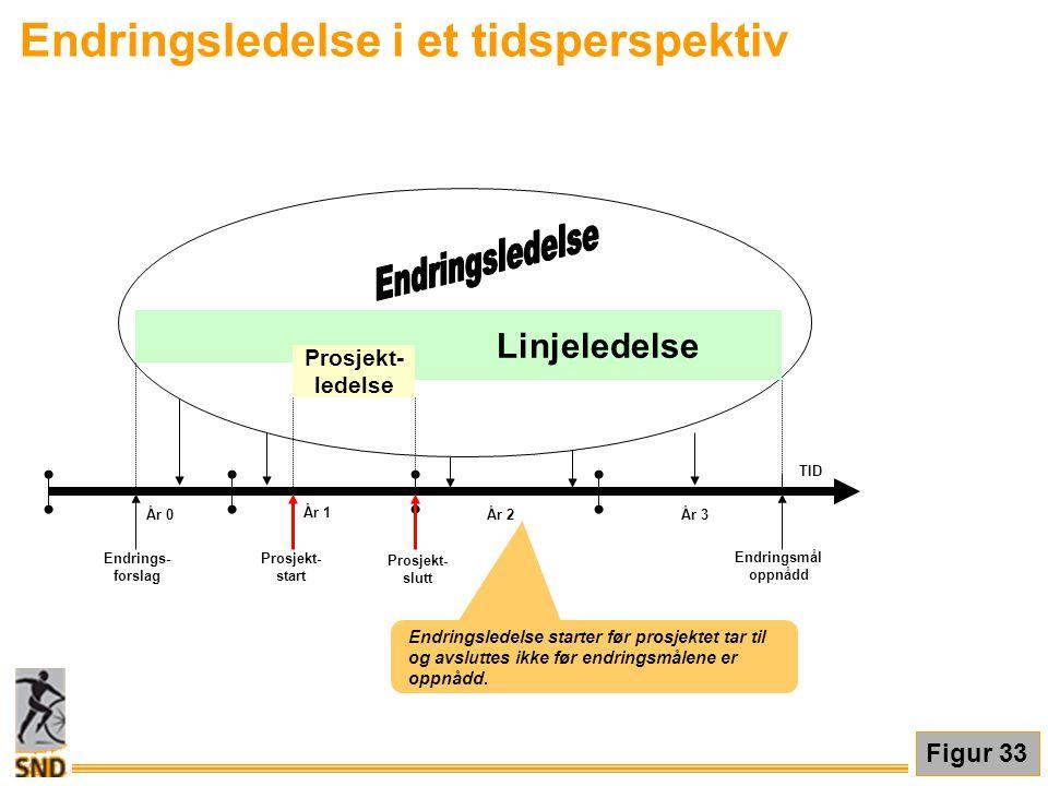 Endringsledelse i et tidsperspektiv TID År 1 År 2År 3 Endringsmål oppnådd Linjeledelse Prosjekt- ledelse Prosjekt- start Endrings- forslag Prosjekt- s