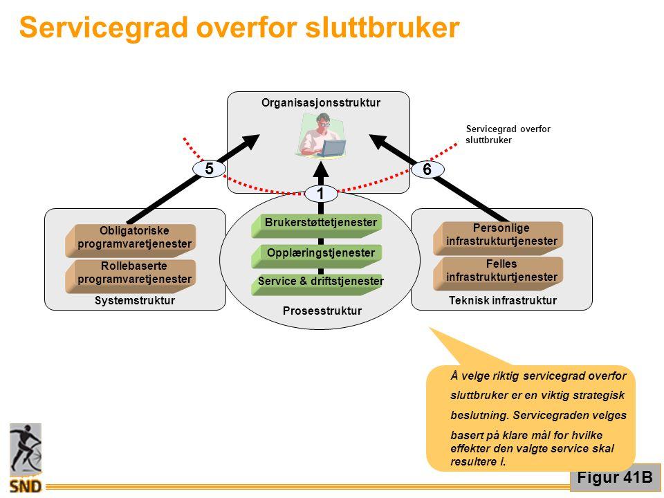Servicegrad overfor sluttbruker Figur 41B Organisasjonsstruktur Systemstruktur Teknisk infrastruktur Prosesstruktur Brukerstøttetjenester Opplæringstj