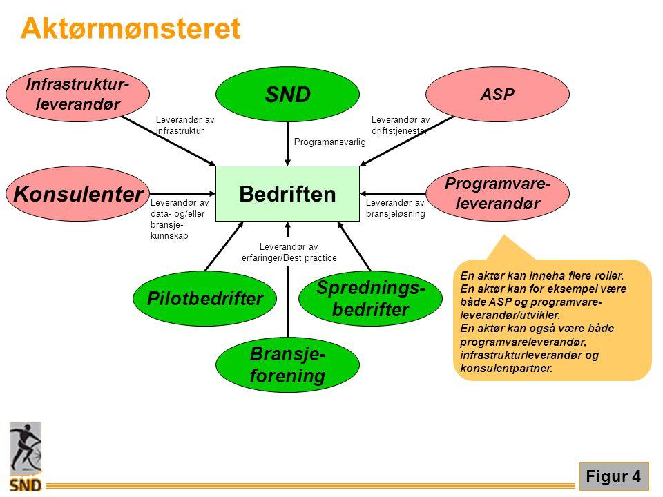 Bedriften SND Programansvarlig Programvare- leverandør Leverandør av bransjeløsning Konsulenter Leverandør av data- og/eller bransje- kunnskap Pilotbe