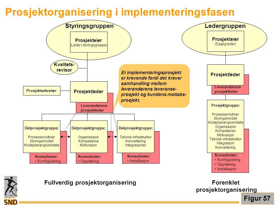 Prosjektorganisering i implementeringsfasen Et implementeringsprosjekt er krevende fordi det krever samhandling mellom leverandørens leveranse- prosje