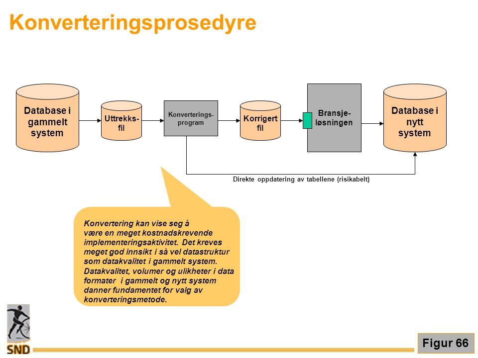 Database i gammelt system Uttrekks- fil Konverterings- program Korrigert fil Bransje- løsningen Database i nytt system Direkte oppdatering av tabellen