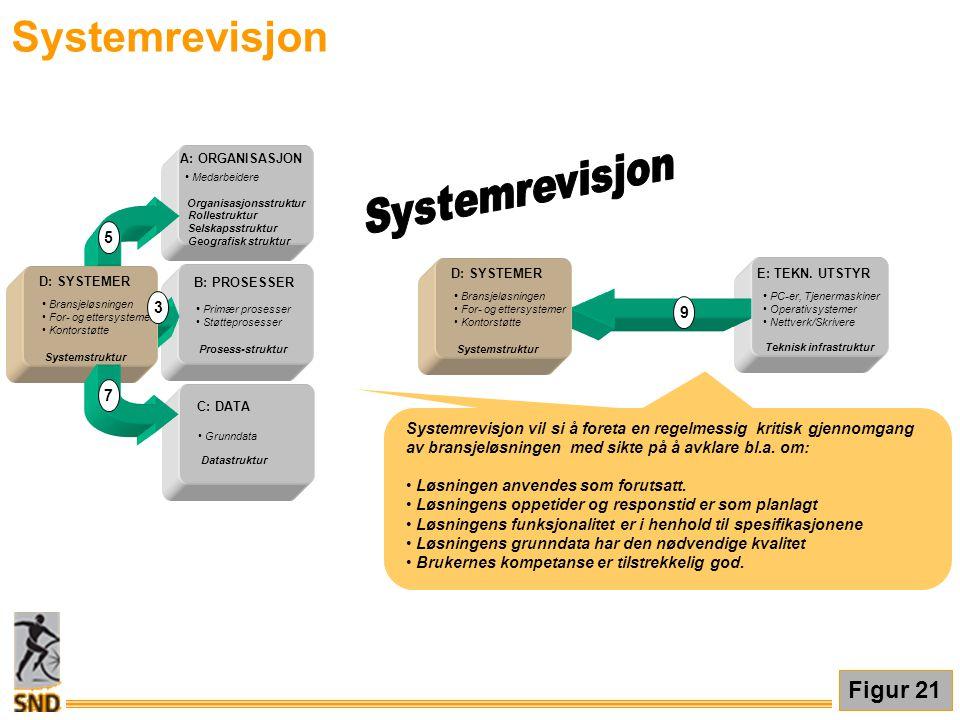 Systemrevisjon Figur 21 • Medarbeidere Organisasjonsstruktur Rollestruktur Selskapsstruktur Geografisk struktur A: ORGANISASJON B: PROSESSER • Primær