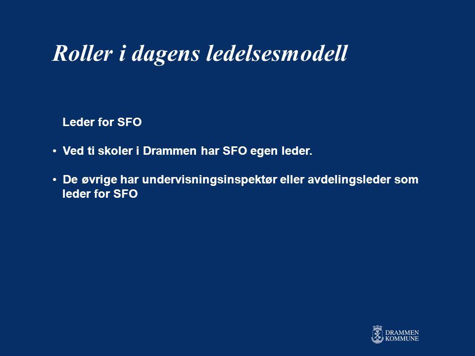 Leder for SFO • Ved ti skoler i Drammen har SFO egen leder.