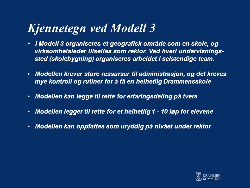 • I Modell 3 organiseres et geografisk område som en skole, og virksomhetsleder tilsettes som rektor.